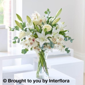 White Lily & Orchid Vase Arrangement