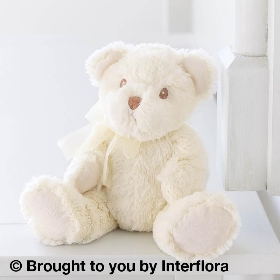 Baby Boy Perfect Gift with Bramble Bear