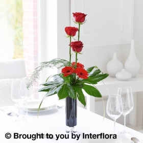Elegant Crimson Rose and Germini Vase